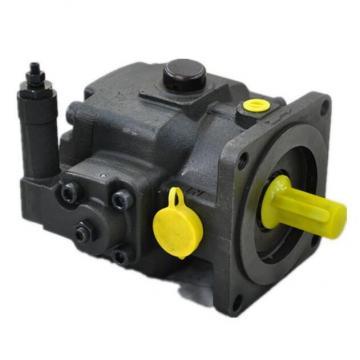 Vickers PV046R1K1KJNMRZ+PV046R1L1JHNMR Piston Pump PV Series
